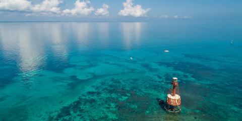 Barrier Reef Key West