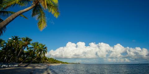 Tropical Beach Florida Keys