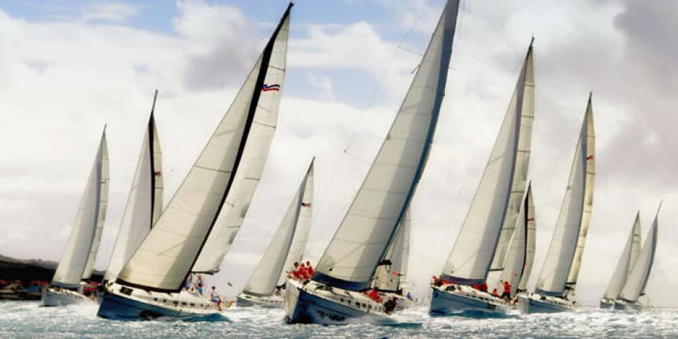 Sailboats sailing in a regatta